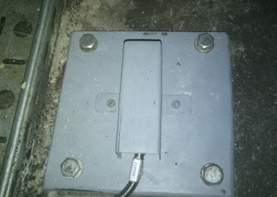 P80509-164008
